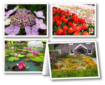 Our Daily Bread Readers' Notecards: Gardens