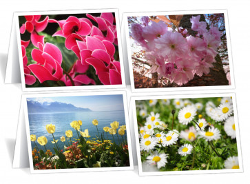 Our Daily Bread Readers' Notecards—Floral
